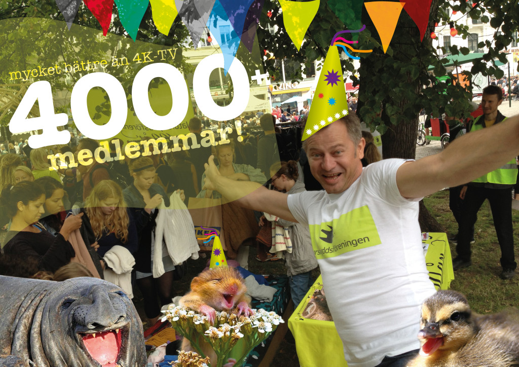 4000 medlemmar 2015 wow v2